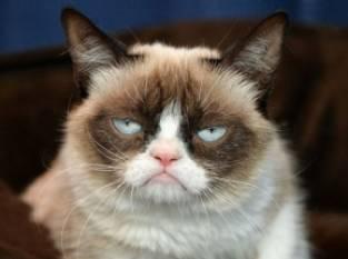 hallo grumpy!