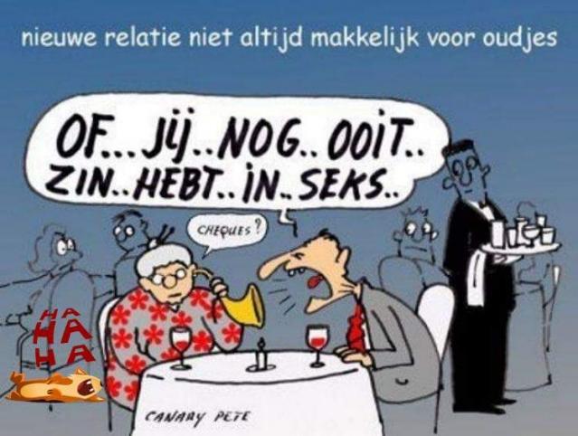 relatie websites Rotterdam