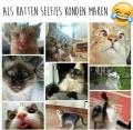 als een kat een selfie zou maken....