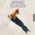 verdorie, ik ben Batman