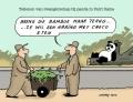 zwangere panda....