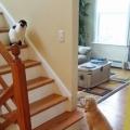 durf de trap niet opkomen kleine!!!